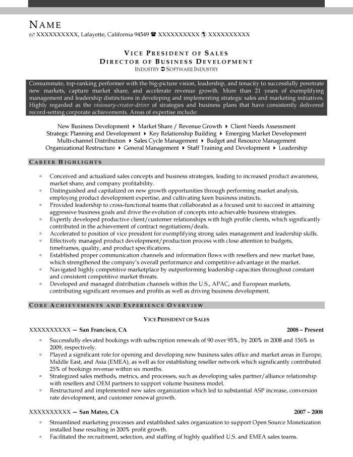 Vice President of Sales Director of Business Development Resume Sample After