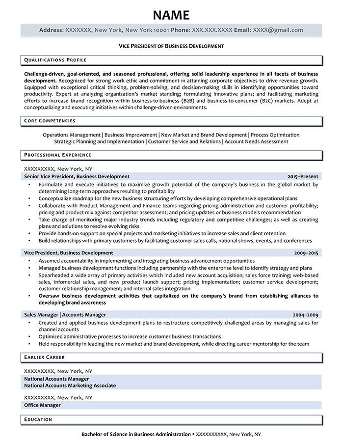 Executive Resume VP of Business Development